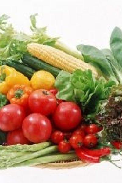۱۰۱ دلیل برای اینکه من گیاهخوار هستم