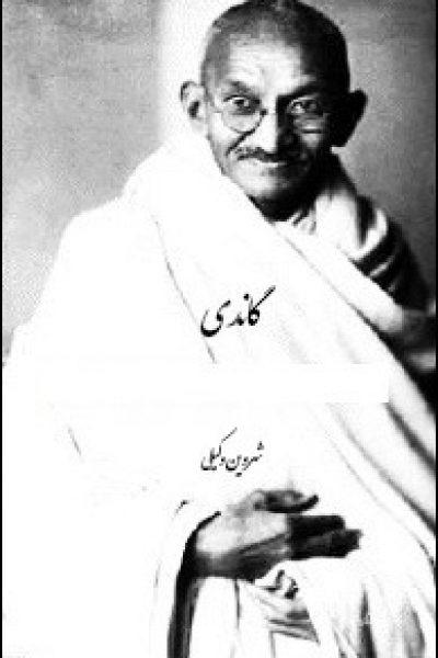 کتاب گاندی-نوشته شروین وکیلی