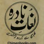 لغت نامه فارسی به اردو (لغات نادره) کمیاب چاپ پاکستان - چاپ سنگی
